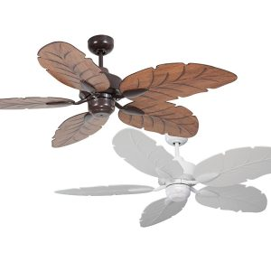 Cooya Ceiling Fan