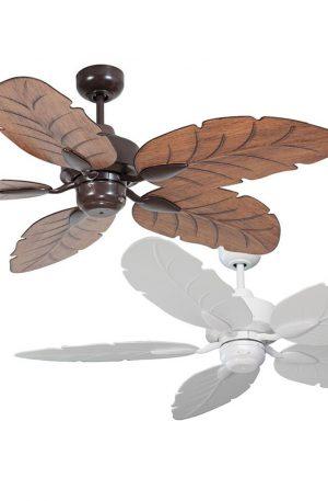 Cooya Ceiling Fan