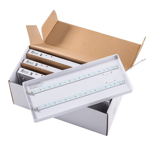 Boxit Gear Tray Only Bulk Pack