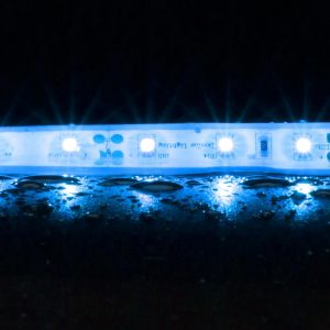 Strip-60 W/p 4.8w 1m 12v/blue