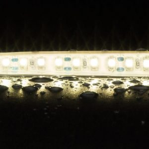 Strip-120 W/p 10w 1m 12v Ho 40k Light