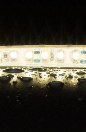 Strip-120 W/p 10w 1m 12v Ho 40k Light